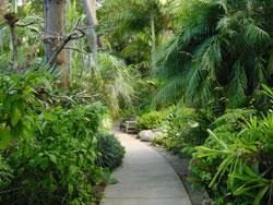 Quail Botanical Gardens