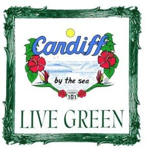 a-green-bag-float-color-a-new-logo-copy