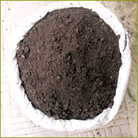 Learn how to make your own vermicompost at this FREE workshop!
